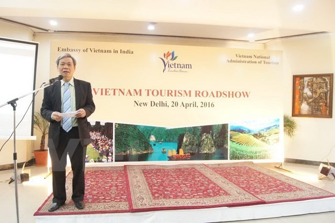 Vietnam's tourism promoted in India - ảnh 1
