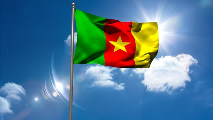 Vietnamese leaders send congratulatory messages on Cameroon National Day - ảnh 1