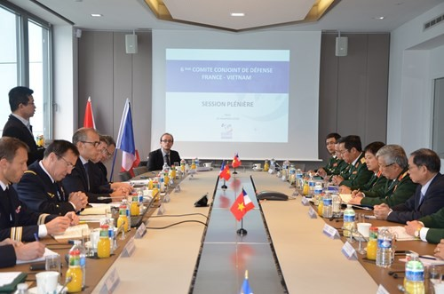 Vietnam, France deepen defence cooperation - ảnh 1