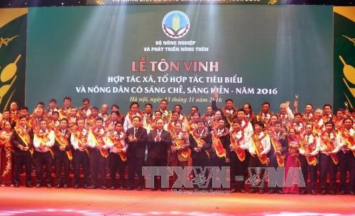 Ceremony honors outstanding cooperatives and farmers - ảnh 2