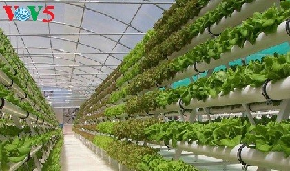 Ha Nam develops smart agriculture - ảnh 2
