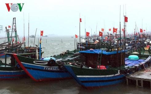 Vietnam's coastal provinces combat storm Doksuri - ảnh 1