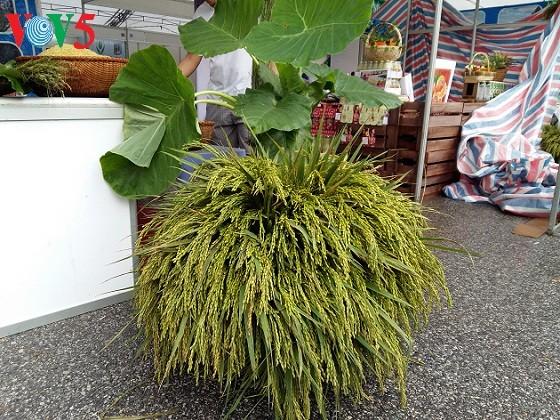 Me Tri green sticky rice, a specialty of Hanoi - ảnh 3
