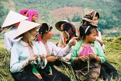 Irish doctor and poverty reduction efforts for ethnic minority groups in Vietnam - ảnh 2