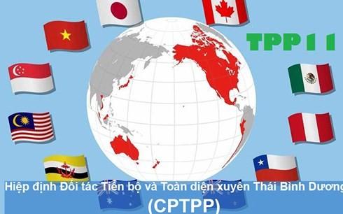 Vietnam prepares to take advantage of CPTPP agreement - ảnh 1