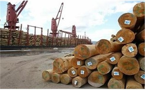 Vietnam targets 9 billion USD from wood exports in 2018 - ảnh 1
