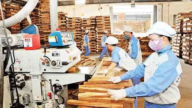 Vietnam targets 9 billion USD from wood exports in 2018 - ảnh 2