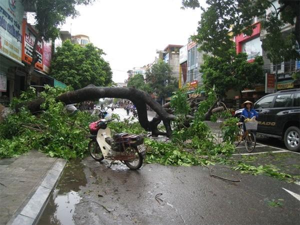 台風マンクット、ベトナムに上陸 - ảnh 1