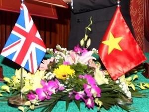 越英、草の根外交活動を強化 - ảnh 1