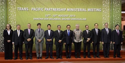 TPP「年内妥結へ交渉加速」 閣僚会合終え - ảnh 1