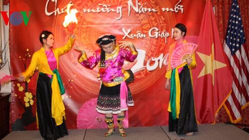 各国在留ベトナム大使館、テトを祝う集い - ảnh 1