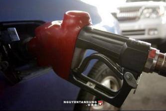 OPEC 原油生産量目標据え置きで合意 - ảnh 1
