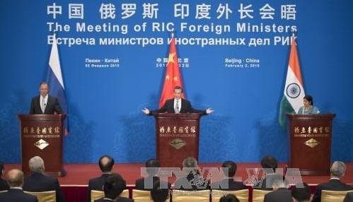 中露印外相会議が北京で開催、戦略的協調の強化で一致 - ảnh 1