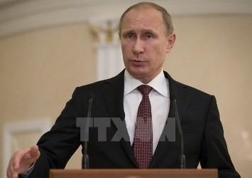 露大統領「外部による圧力には同等の対抗措置」 - ảnh 1