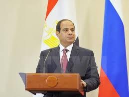 エジプト大統領、アラブ連合軍に言及 対「イスラム国」  - ảnh 1