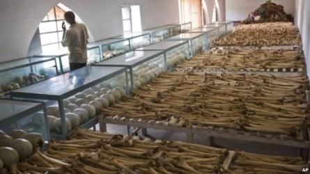 ルワンダ虐殺の機密文書公開=仏大統領府 - ảnh 1