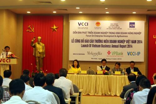 ベトナム企業年次報告書2014を発表 - ảnh 1