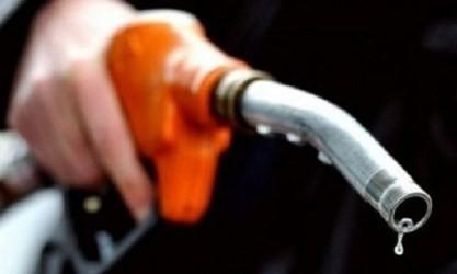 NY原油4か月ぶり高値…1バレル=56ドル台 - ảnh 1