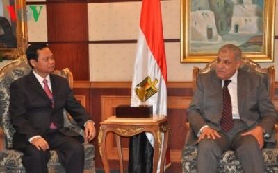 政府監査長官、エジプト訪問中 - ảnh 1