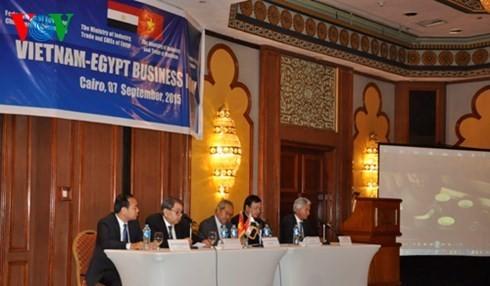 ベトナム・エジプト企業フォーラムが行われる - ảnh 1
