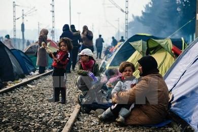 マケドニアが難民の入国停止、欧州への主要ルート閉じる - ảnh 1