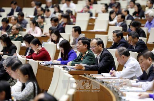 国会と国家主席の活動報告を行なう - ảnh 1