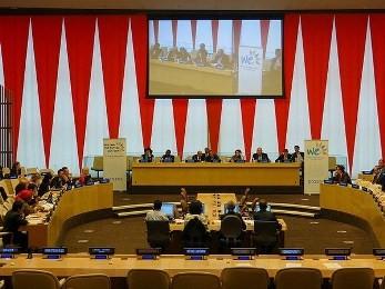 ベトナム、ECOSOCの高級対話に参加 - ảnh 1
