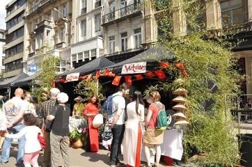 ブリュッセルで「ベトナム色彩」を披露 - ảnh 1