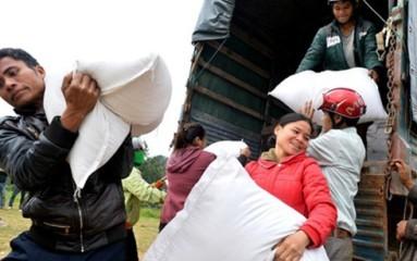 ビンディン省洪水被災者に2千トンのコメの緊急支援 - ảnh 1