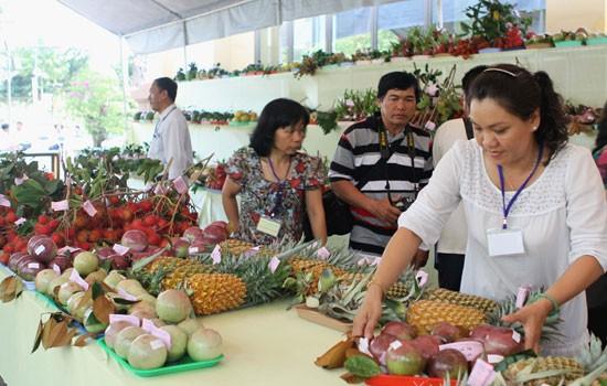 国際市場向けのベトナム果物の輸出促進 - ảnh 1