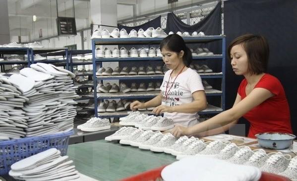 ベトナム・カナダ貿易黒字が増加 - ảnh 1