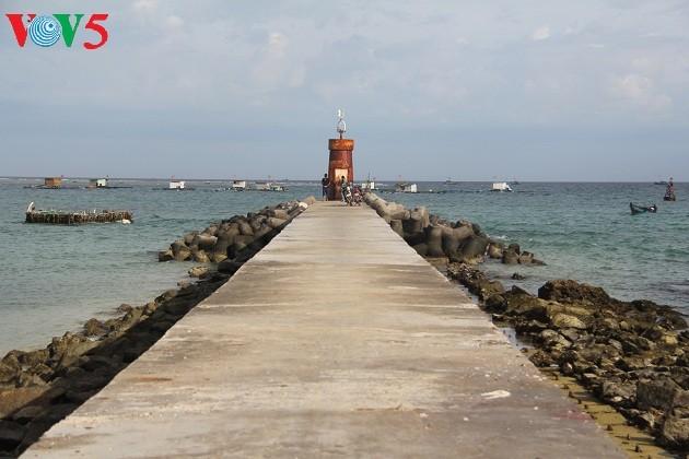 リーソン島の観光ツアー - ảnh 1