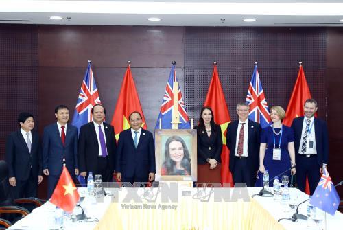 フック首相、APEC加盟諸国の指導者と会見 - ảnh 1