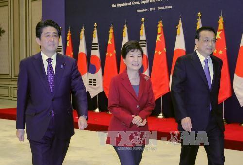 中日韩一致同意完全恢复三方合作机制 - ảnh 1