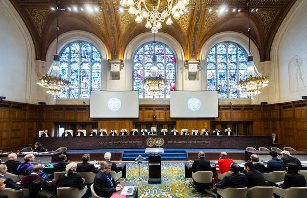 国际社会支持海牙常设仲裁法院仲裁庭对东海仲裁案作出的裁决 - ảnh 1
