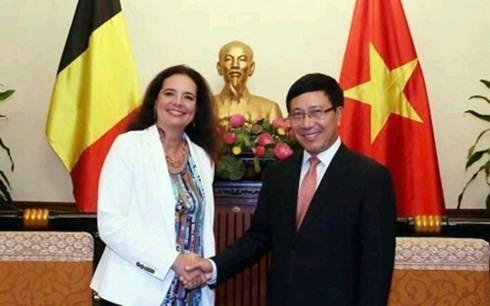 越南政府副总理兼外长范平明会见冰岛外交与外贸部长及比利时参议院议长 - ảnh 2