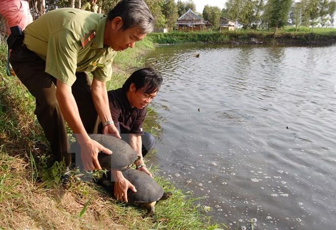 丹麦将继续协助越南保护生物多样性 - ảnh 1