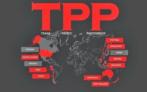 美国启动《跨太平洋伙伴关系协定》批准程序 - ảnh 1