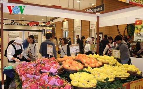 越南芒果正式打入日本市场 - ảnh 1