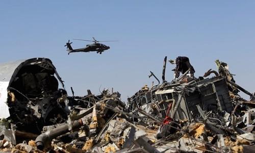埃及公布俄罗斯客机失事更多详情 - ảnh 1