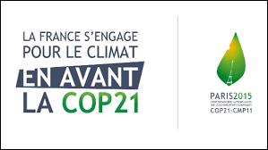 为COP21作准备的非正式部长级预备会在巴黎开幕 - ảnh 1