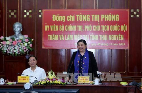越南国会副主席丛氏放视察太原省 - ảnh 1