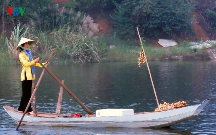 在河内越南民族旅游文化村再现南方水上集市文化 - ảnh 1