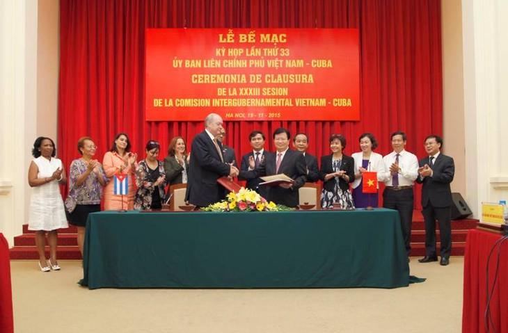 越南和古巴政府间联合委员会第33次会议闭幕   - ảnh 1