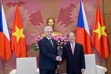 捷克议会参议院主席什捷赫圆满结束对越南的访问 - ảnh 1