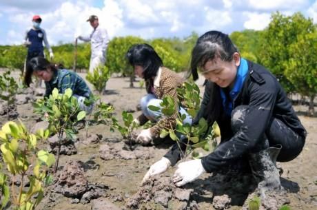 欧盟协助越南应对气候变化 - ảnh 1