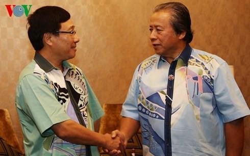 越南政府副总理兼外长范平明会见马来西亚外长阿尼法 - ảnh 1
