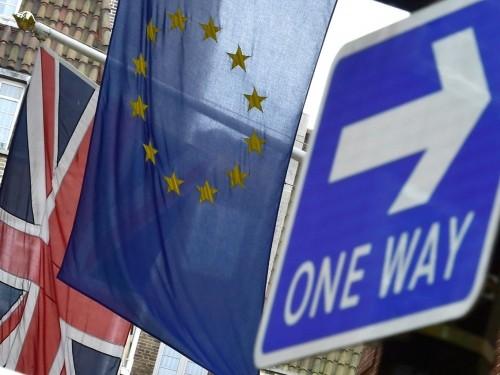 大部分英国人支持脱离欧盟 - ảnh 1