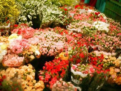 广霸花卉夜市——河内市的独特集市 - ảnh 3