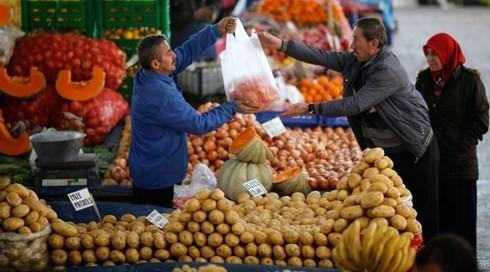 土耳其警告俄罗斯对其实施贸易制裁将影响俄农民 - ảnh 1